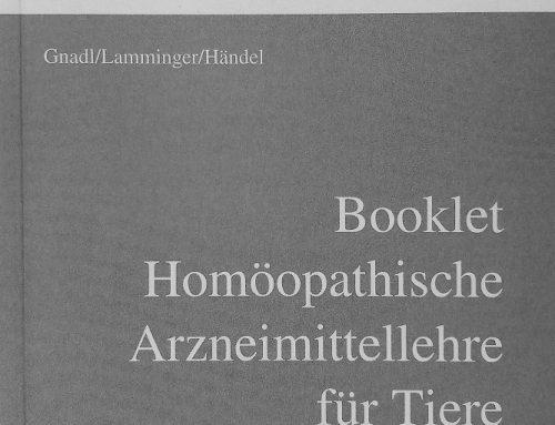 Unser neues Booklet – eine Leseprobe
